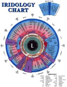iridology-chart-left-eye