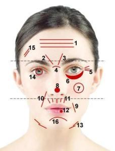 face-map-image
